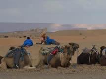 Authentic-Morocco