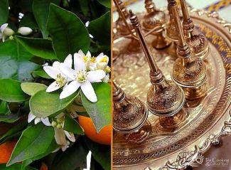 morocco-fes-orange-blossom