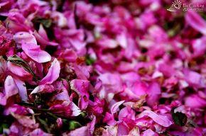 morocco-rose