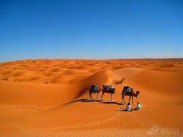 morocco-saha